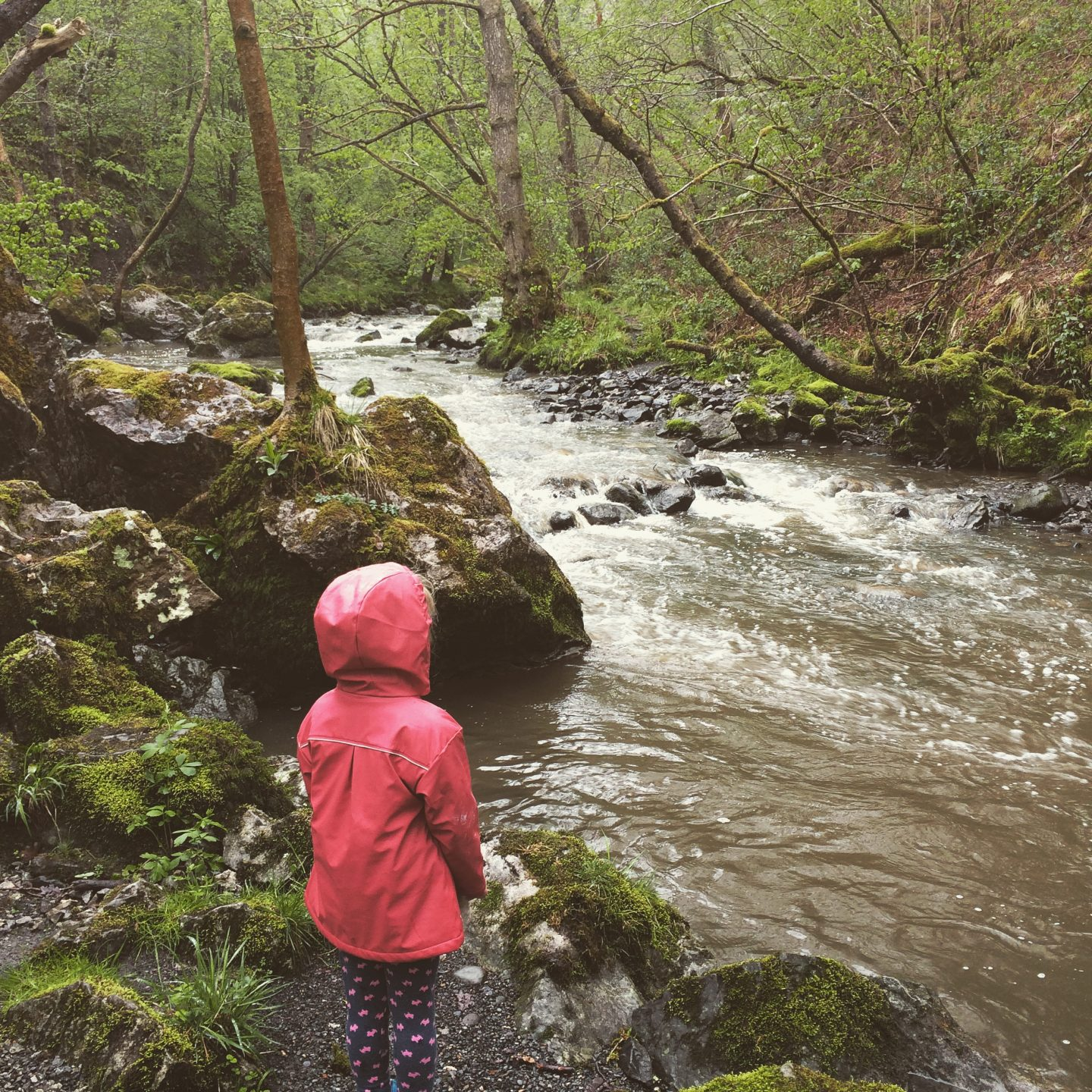 Adventures in Wales: Gorge Walking