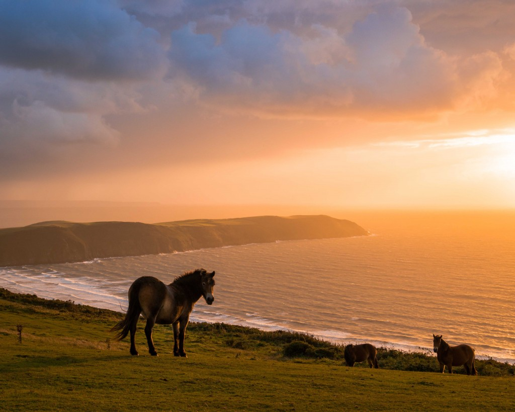 Potters Hill and Woolacombe Bay (3)