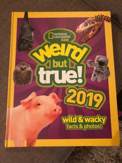 We're loving Weird But True 2019
